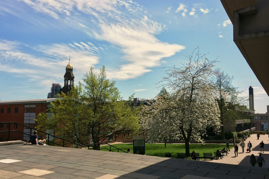A view from the Edward Boyle Library
