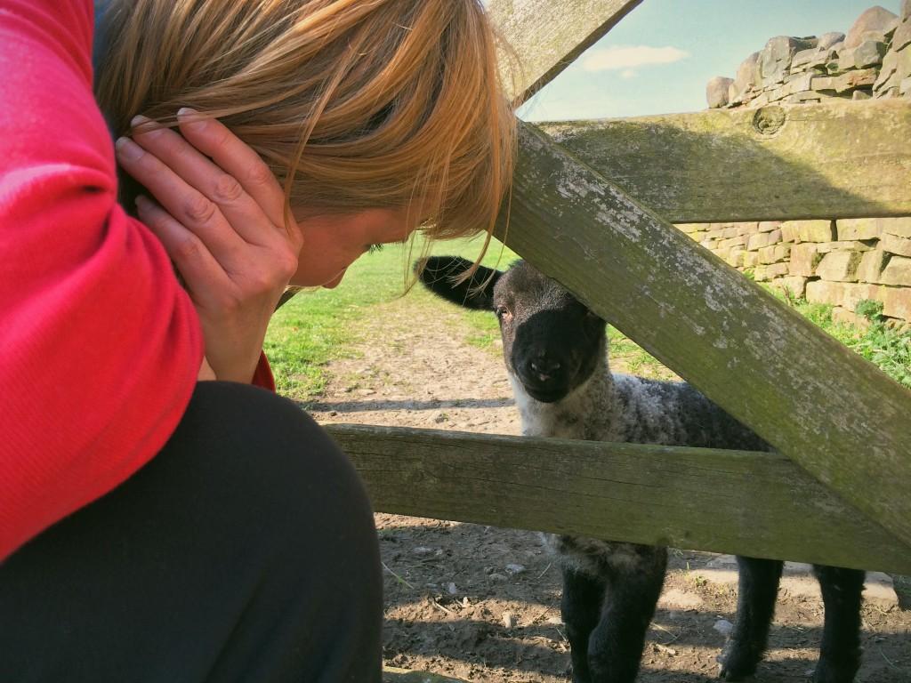 My mum and a friendly lamb