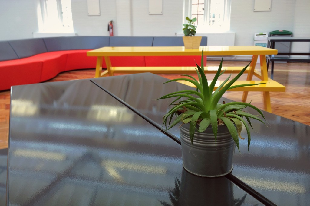 Our common room of picnic tables, sofas and plants