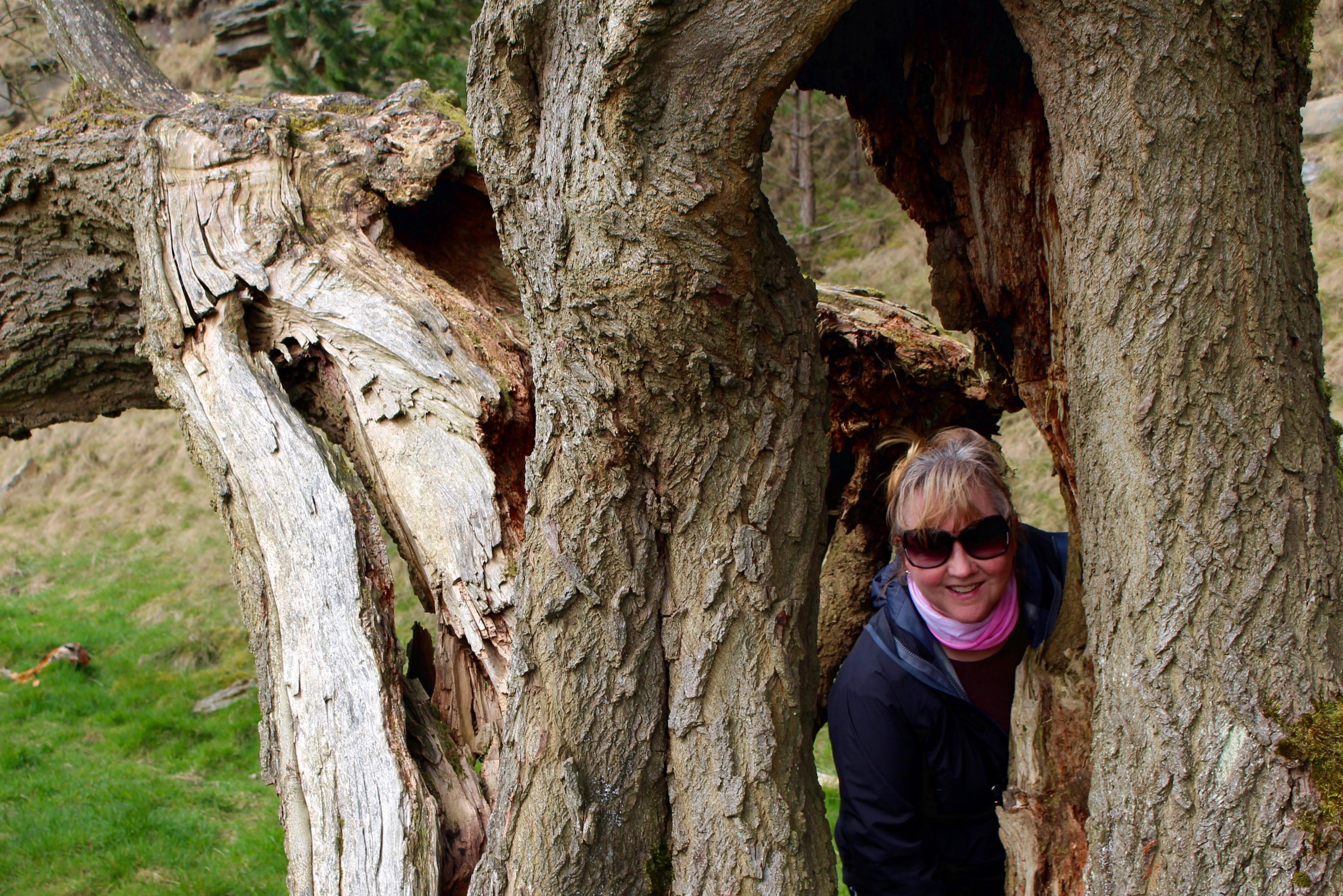 My mum in a broken tree