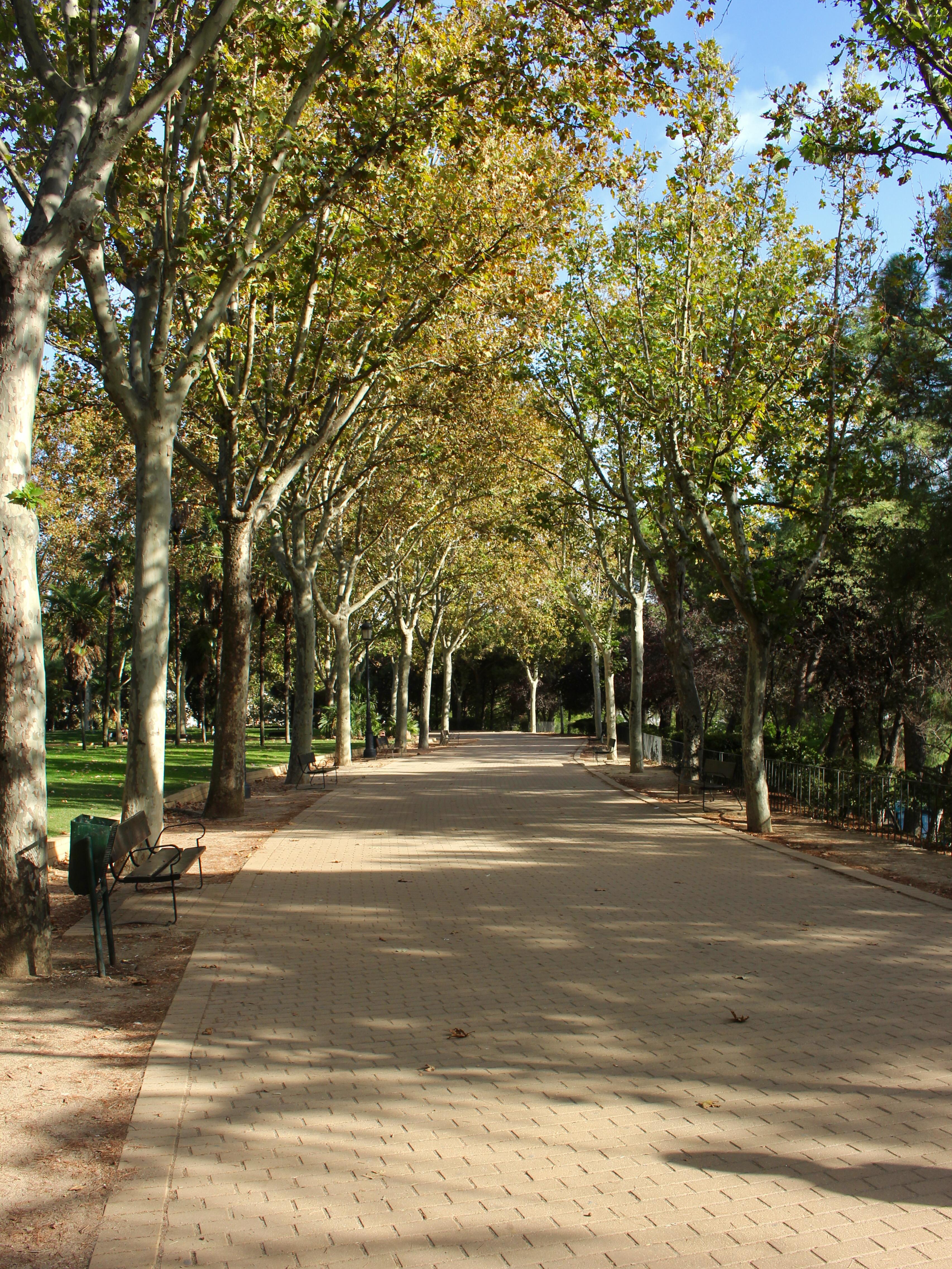Wandering through Parque del Oeste