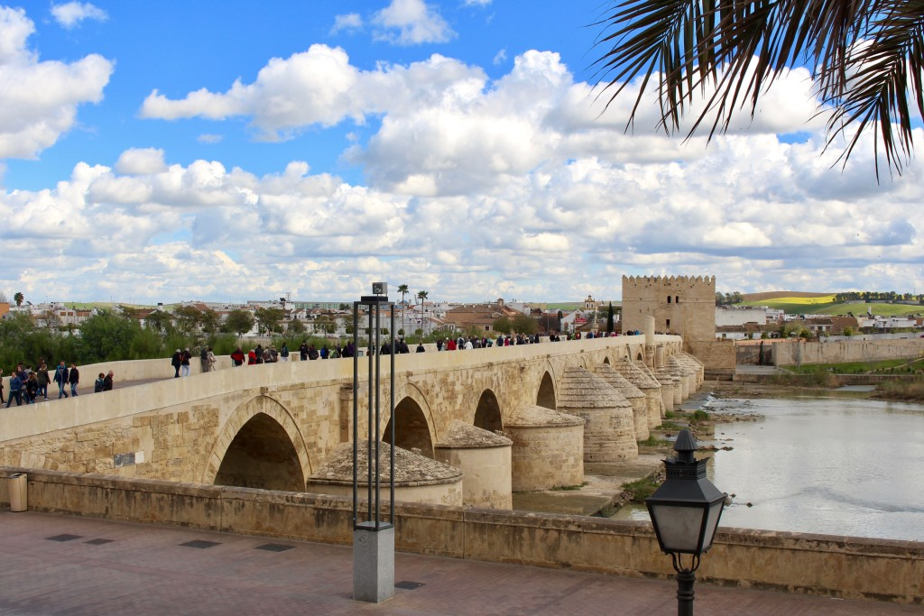 Passing by the roman bridge