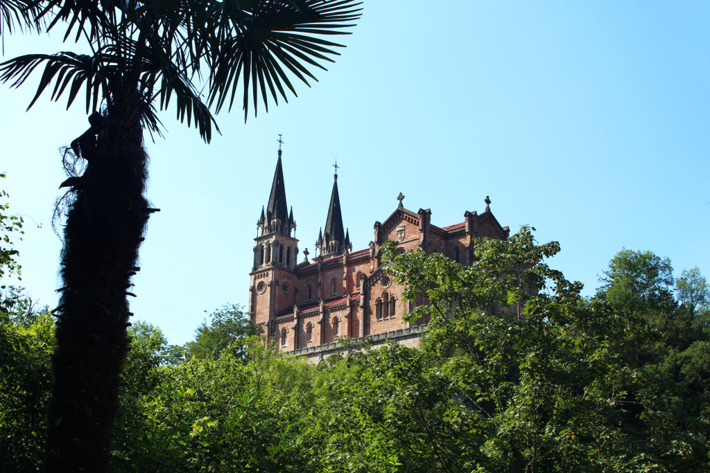Spires rise above the trees