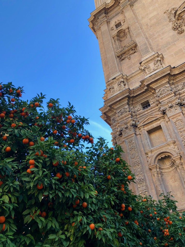 Oranges by the cathedral
