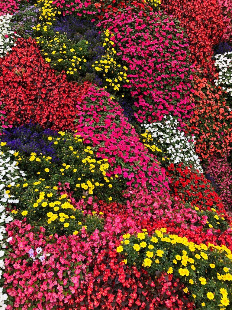 A flower sculpture
