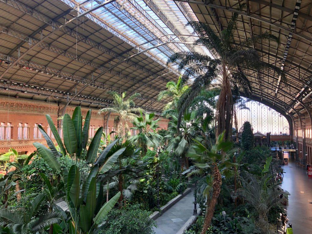 Atocha gardens