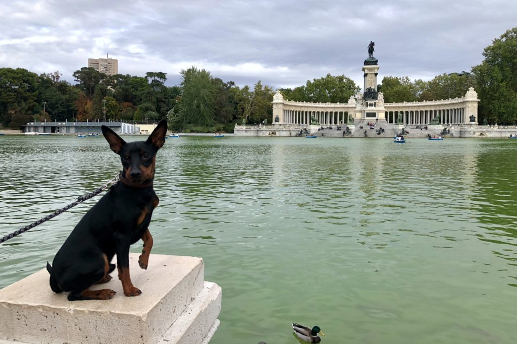 Luke enjoying the sights of Retiro