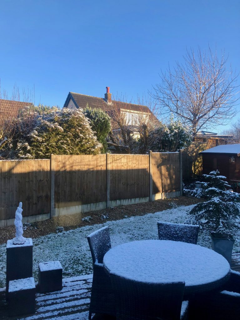 My back garden is lightly sprinkled with snow.