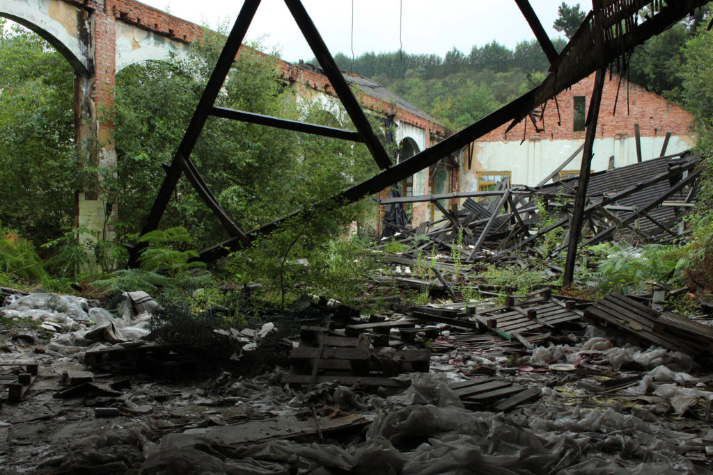 The structural failure of the room in an abandoned factory. The roof has totally collapsed, allowing shrubbery to grow in the ruins.