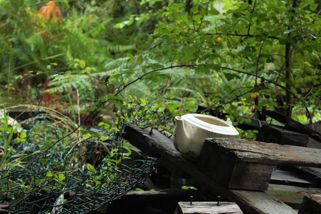An almost complete ceramic teapot sits on a rotting crate in front of some shrubbery.