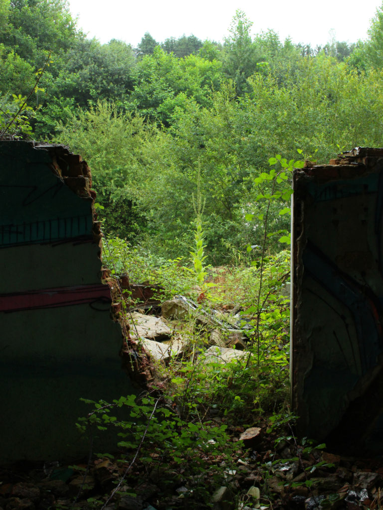 Greenery is seen through a collapsed doorway.