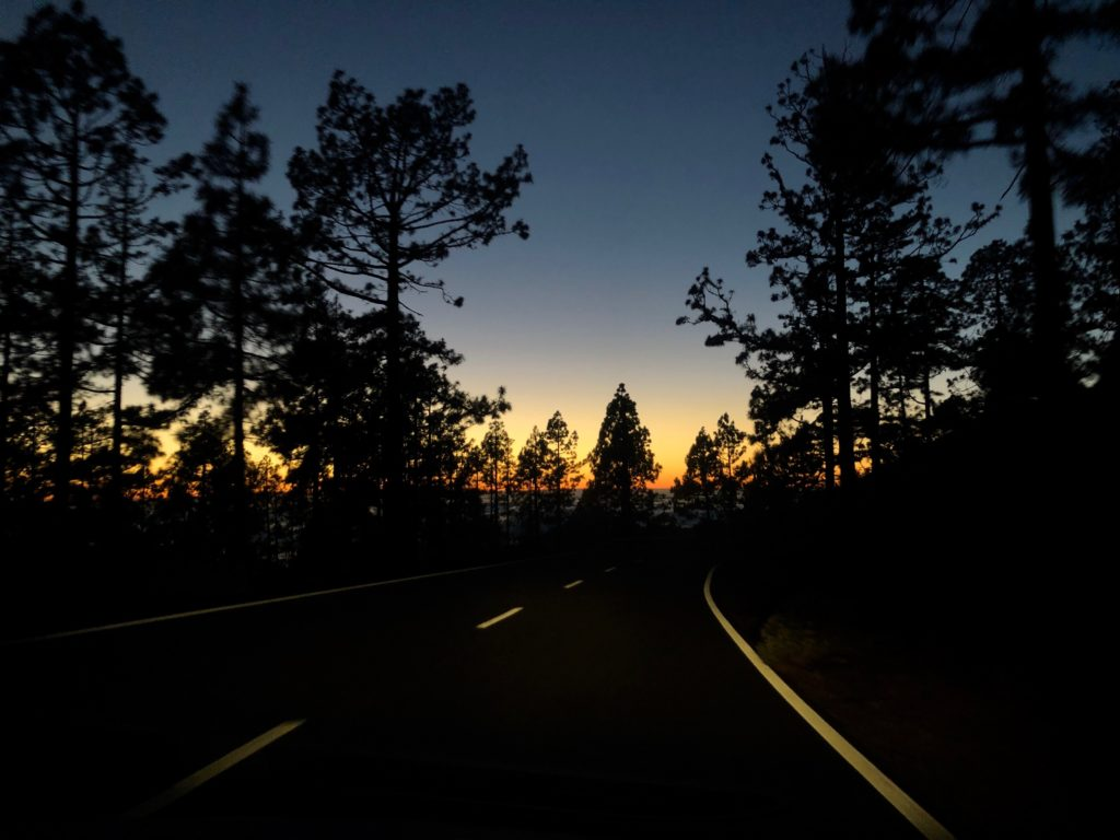 A sunset behind trees taken from the side of the Teide volcano, Tenerife.