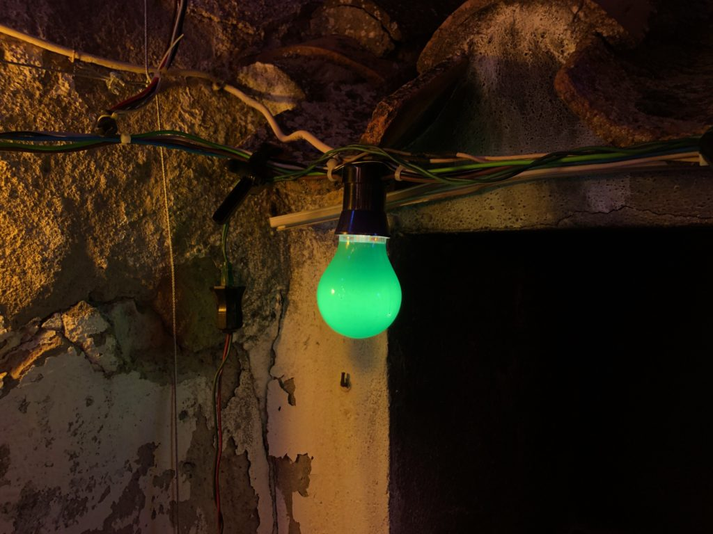 A green lightbulb.