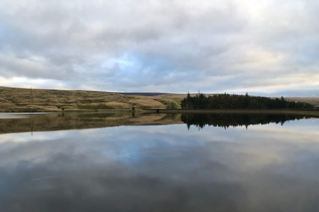 A cloudy sky and forest are reflected in the water of a reservoir.