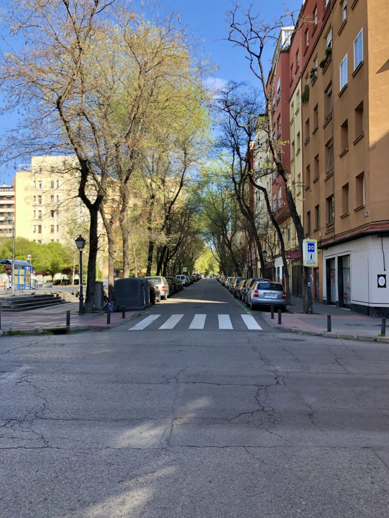 A empty street lined with trees during Madrid's coronavirus lockdown.