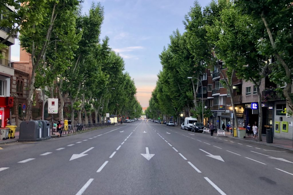 An empty tree-lined street near my flat in Madrid, with a beautiful sunset in the background.