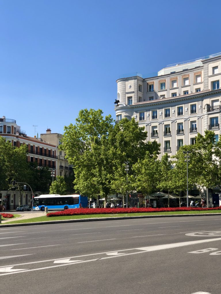 The roundabout at the Puerta de Toledo in Madrid, with a bus in the background between green trees and red flowers.