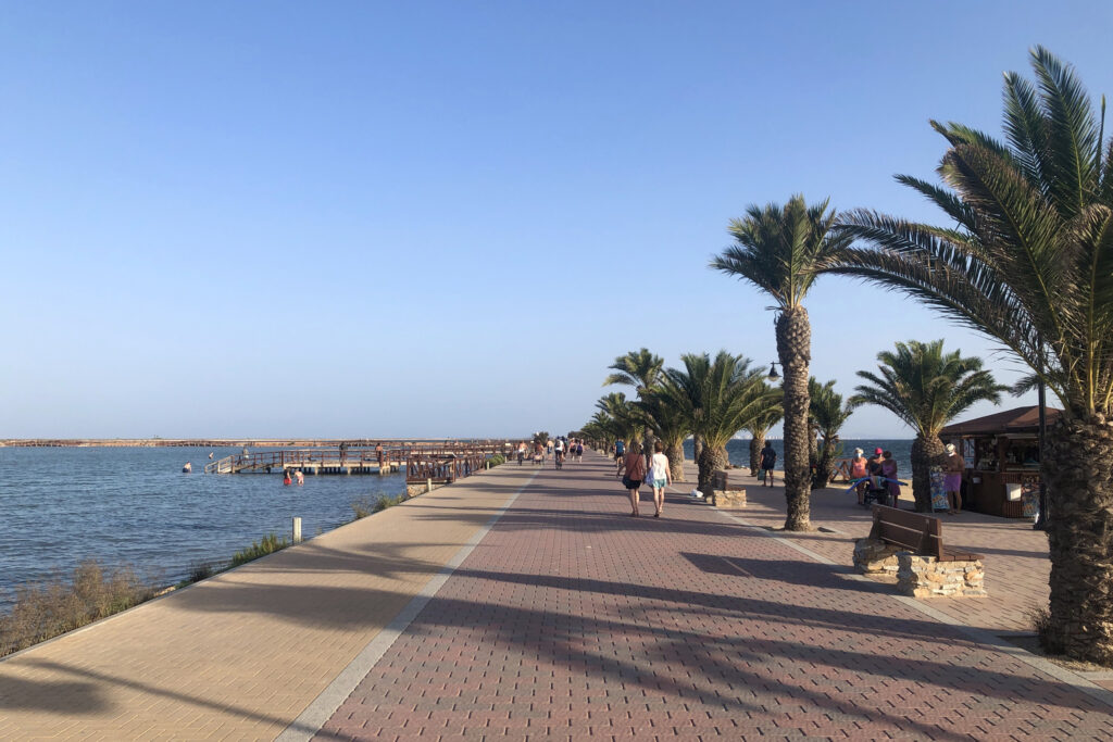 Palm trees line a pier in Lo Pagán.