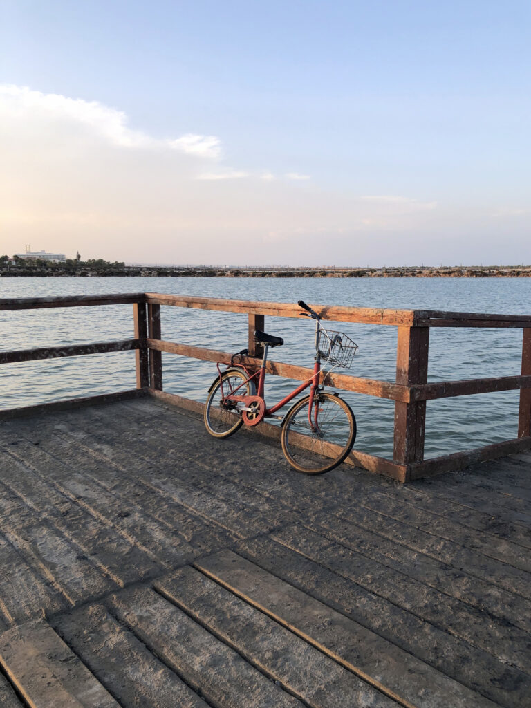 A bicycle tied to a wooden pier in the mud baths.